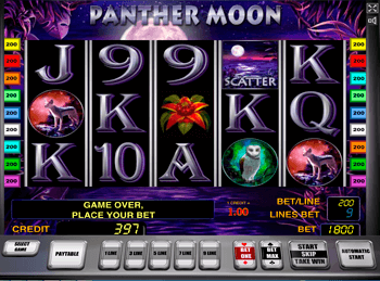 Panther Moon 4